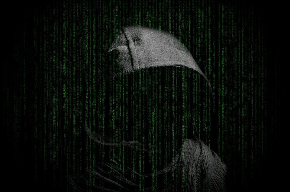 pirates informatique